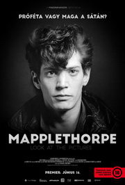 Mapplethorpe: Look at the Pictures (2016) plakát