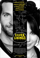 Napos oldal (Silver Linings Playbook)